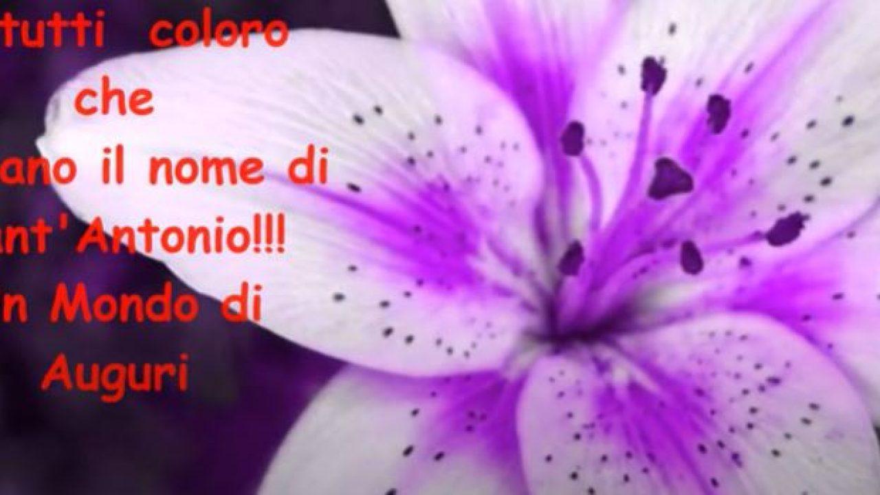 13 giugno, Buon onomastico Antonio e Antonella! Le più belle ...