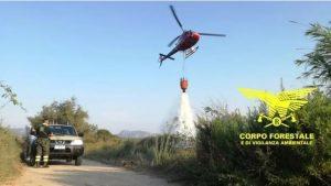 Incendi, oggi 17 roghi scoppiati in Sardegna: in fumo decine di ettari