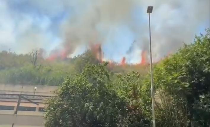 incendio roma monte ciocci