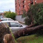 Maltempo Veneto, alluvione lampo a Verona: allagato il pronto soccorso di Borgo Trento, nubifragi anche a Vicenza e Padova [FOTO e VIDEO]