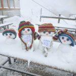 Meteo, dal caldo africano alla neve sulle Alpi: 20cm ad agosto sul Passo dello Stelvio [FOTO]
