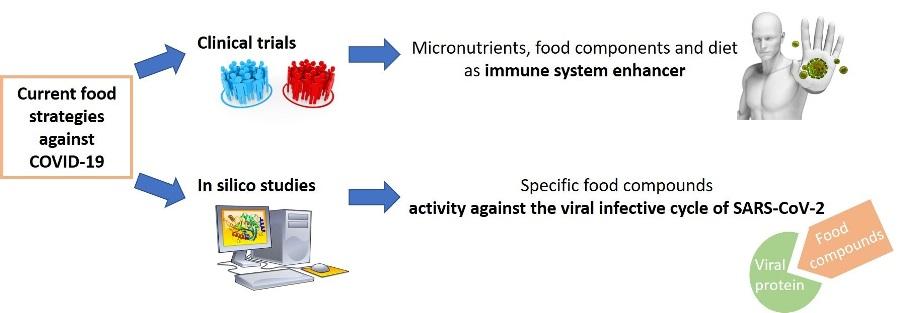 coronavirus alimentazione
