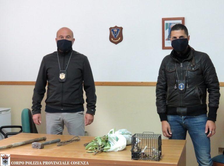 Polizia Provinciale CS- Distacc.S.Giov.Fiore;