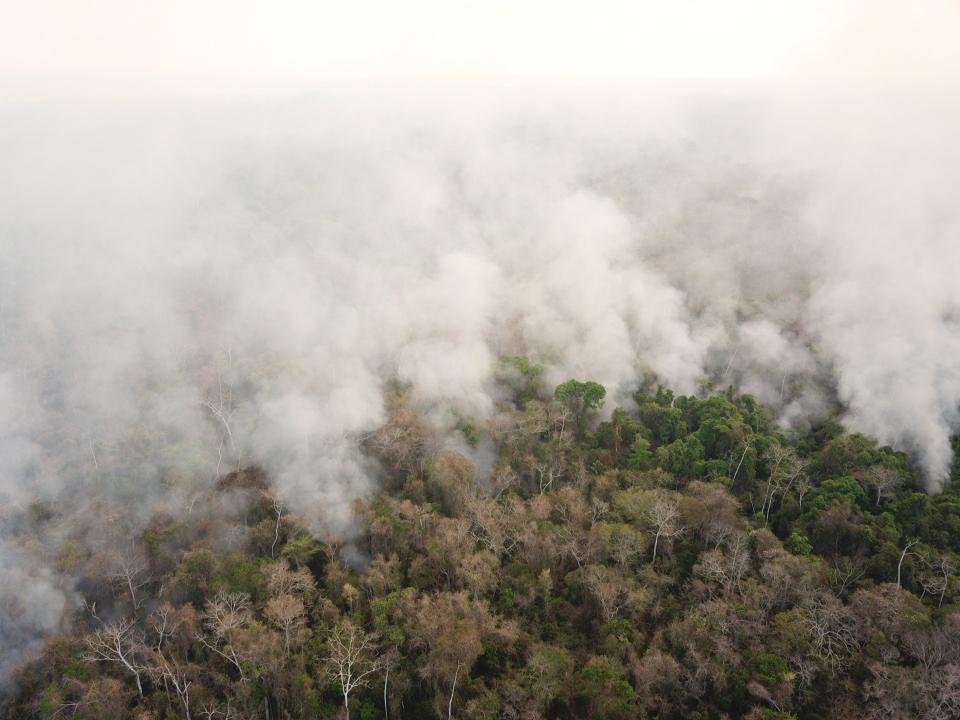 incendi bolivia