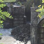 Maltempo: crollato Ponte Lenzino nel Piacentino sulla 45 tra Marsaglia e Ottone [FOTO]