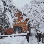 Meteo, le Alpi sotto una nevicata storica provocata dallo scirocco: sommerse dalla neve le principali località montane d'Italia [FOTO e VIDEO]