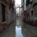 Maltempo, acqua alta a Venezia: marea a 122cm, il Mose non è attivo. Previsto picco di 145cm [FOTO e VIDEO]