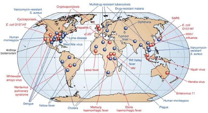 bassetti infezioni