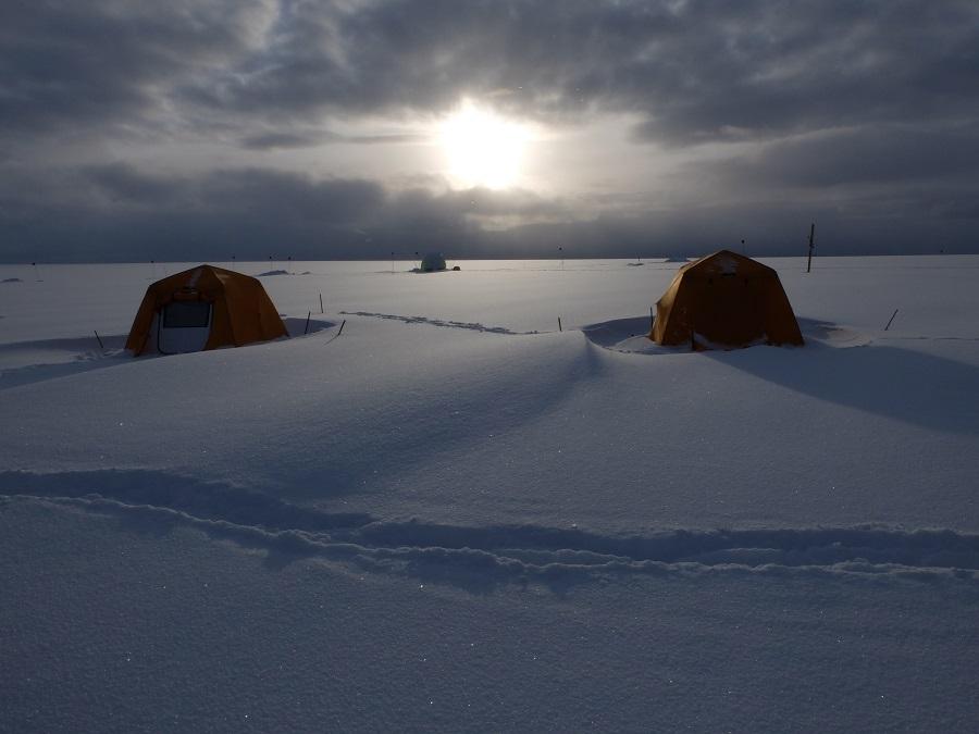 cnr ghiacci artico