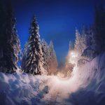 Scenari fiabeschi in alta Valle Brembana, almeno 2 metri di neve a Foppolo [FOTO]