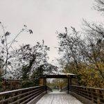 Maltempo, neve in Emilia Romagna: Bologna e Parma si svegliano imbiancate [FOTO]