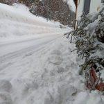 Maltempo Friuli Venezia Giulia, oltre mezzo metro di neve in montagna e vento a quasi 100km/h [FOTO e VIDEO]