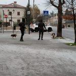 Maltempo, l'ondata di freddo è arrivata anche in Friuli Venezia Giulia: neve sul Carso e Bora fino a 97km/h a Trieste [FOTO e VIDEO]