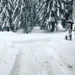 Maltempo, lo spettacolo di Cortina sotto 70cm di neve: abitanti in centro con gli sci [FOTO e VIDEO]