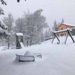 Forte nevicata sull'Appennino emiliano: dai paesaggi da 'fiaba' alle frane sulle strade, diversi interventi di soccorso [FOTO]