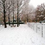 Prime nevicate a bassa quota in Piemonte: punte di 40-45 cm su Langhe e Appennini [FOTO]
