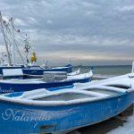 Maltempo Liguria, 35cm di neve nel Savonese: imbiancata anche la costa tra Genova e Albenga, vento oltre i 140km/h [FOTO]