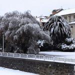Maltempo, neve e pioggia in Liguria: lo spettacolo della costa imbiancata, le FOTO da Savona