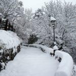 Maltempo, oltre 30cm di neve sull'Appennino modenese: spettacolari immagini da Sestola, in pianura neve mista a pioggia [FOTO]