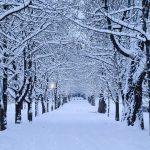 Maltempo, tanta neve anche in Slovenia: fino a mezzo metro di coltre bianca e ghiaccio [FOTO]