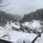Maltempo, tanta neve in Trentino Alto Adige: almeno 80 cm di manto bianco, ed è solo un assaggio [FOTO]