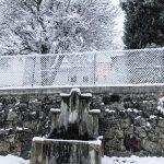 Maltempo, prime nevicate in Trentino Alto Adige: quota neve intorno a 500-600 metri [FOTO]