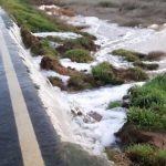 Maltempo Sardegna: esonda lo stagno di S'Ena Arrubia nell'Oristanese, chiusa strada provinciale [FOTO e VIDEO]