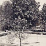Maltempo, tante neve oggi in Friuli: Udine ricoperta dal manto bianco, fiocchi anche nel Goriziano e nel Pordenonese [FOTO]