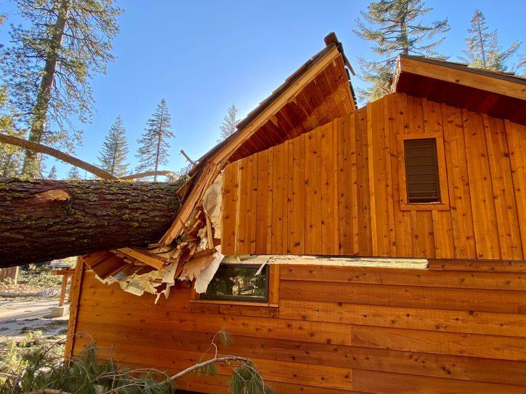 Credit: Yosemite National Park
