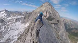 Capitol Peak aspen