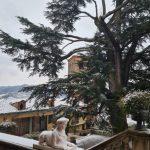 Maltempo e gelo in Piemonte: fiocchi di neve su Torino e Casalborgone [FOTO]