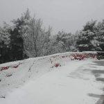 Maltempo, San Valentino gelido in Puglia: tanta neve a San Marco in Lamis, spolverata ad Andria [FOTO]
