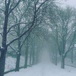 Maltempo Campania: neve nel Sannio e in Irpinia, imbiancate anche Avellino e Benevento [FOTO e VIDEO]