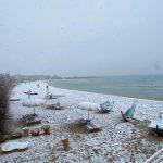 Maltempo, scenari polari in Puglia: la neve ricopre gli uliveti del Salento, imbiancata la spiaggia di Porto Cesareo [FOTO]