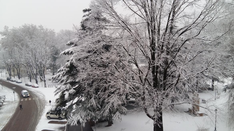 neve trentino