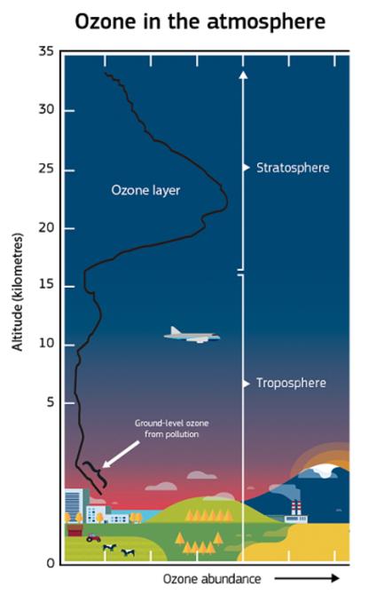 ozono copernicus