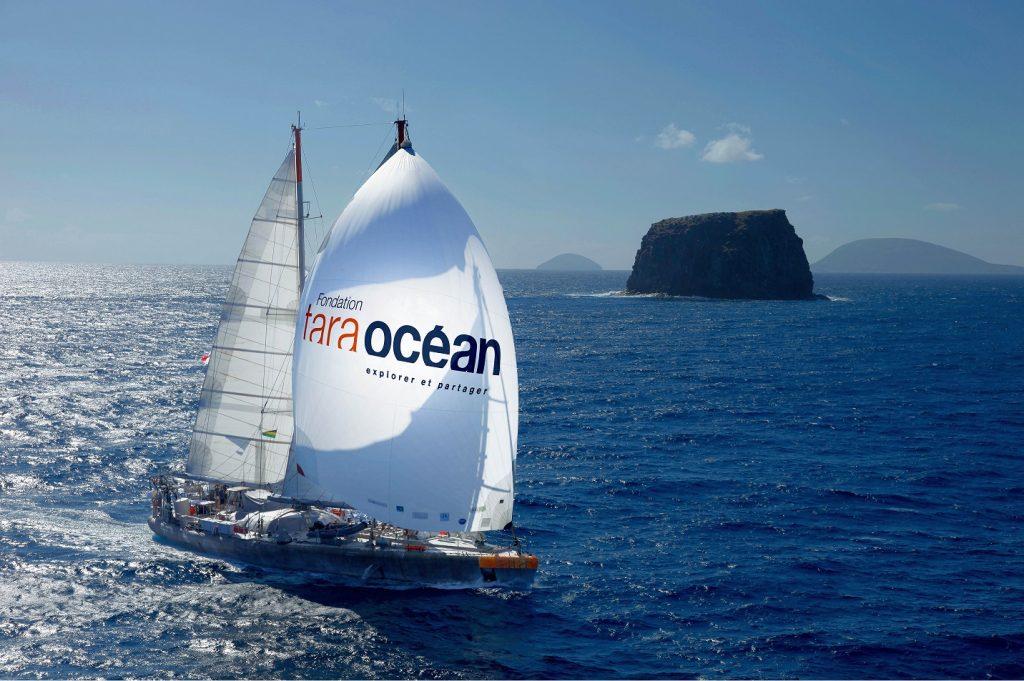 Tara Ocean