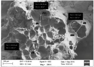 Immagine al SEM di cenere vulcanica etnea