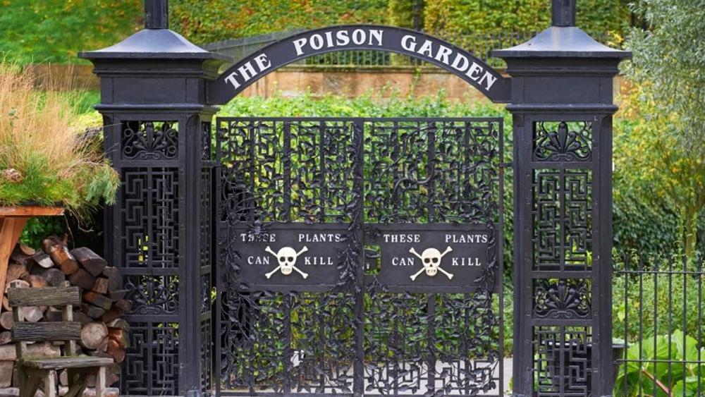 il giardino dei veleni