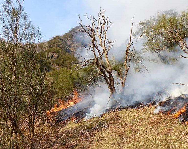 L'incendio sul Monte Rinatu - foto di Saro Barbagallo