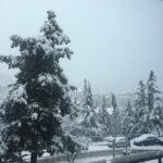 Maltempo Basilicata, neve in provincia di Potenza: oltre 15cm nel capoluogo [FOTO]