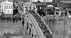 ponte marcia selma