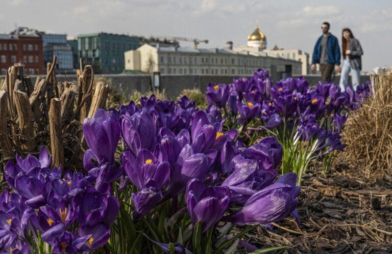 Foto di Sergei Ilnitsky / Ansa