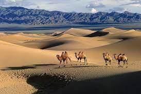 dune gobi