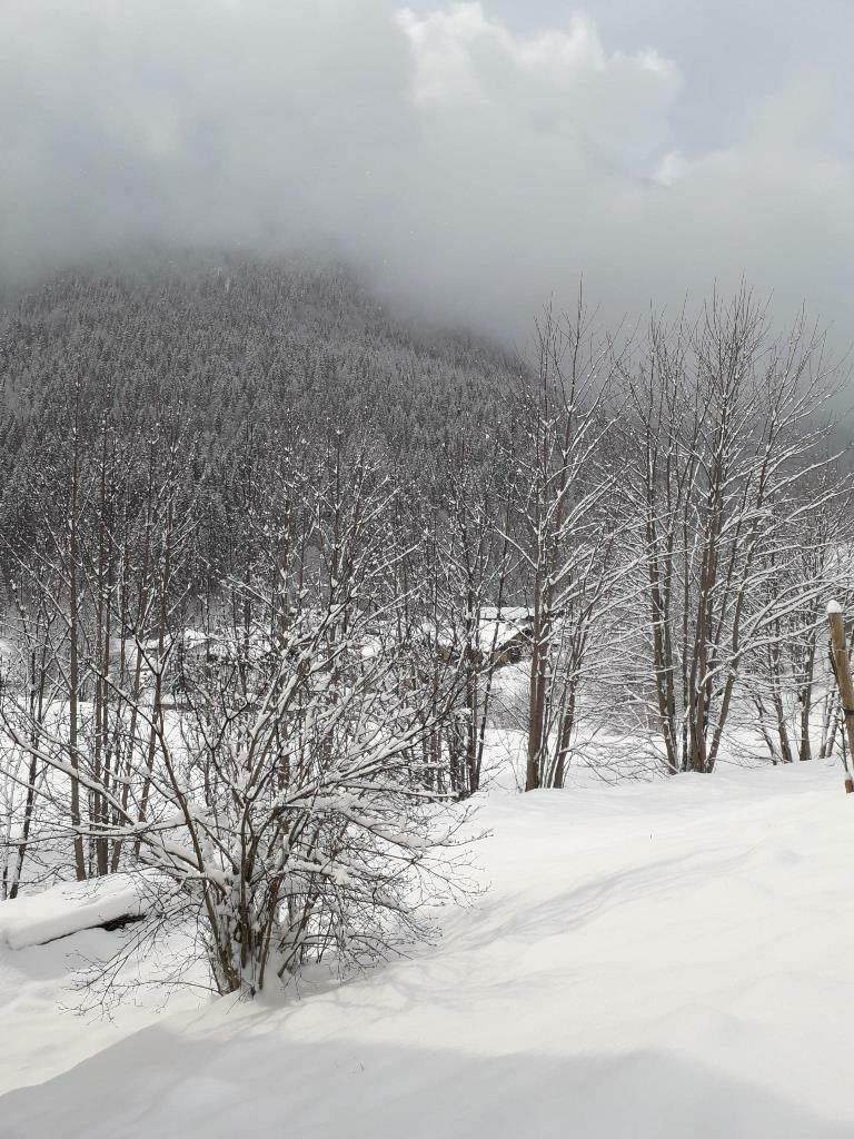 La neve ha imbiancato Falcade, sulle Dolomiti bellunesi. Foto Diego Costa / Ansa