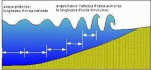 schema tsunami