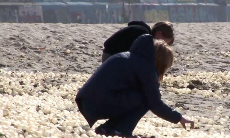 Screenshot da video Ruptly