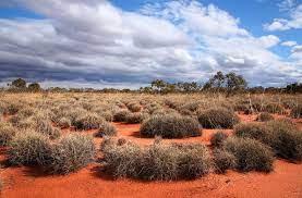 Great Victoria Desert australia
