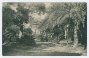 antico orto botanico messina