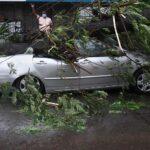Ciclone Tauktae in India, danneggiati 16.500 edifici e abbattuti 40.000 alberi: aumenta il bilancio dei morti [FOTO]